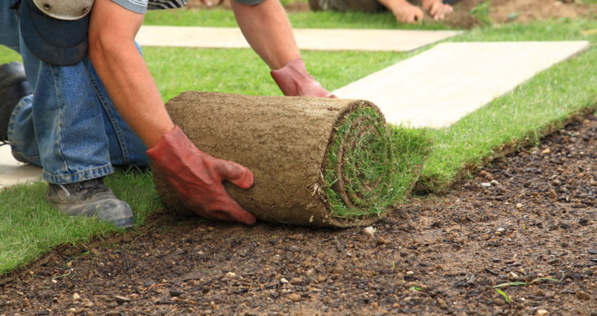 ve-co Turfing Services - North West London
